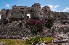 在Tulum,尤加坦,墨西哥的玛雅废墟。 库存图片