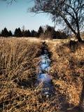 在TurÄ  ianske特普利采附近的自然小河 库存照片
