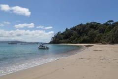 在Tutukaka海岸的鲸鱼海湾在新西兰 免版税图库摄影