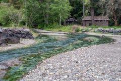 在Twanoh公园的小河 库存图片