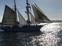 在Twighlight的高风帆 免版税库存图片