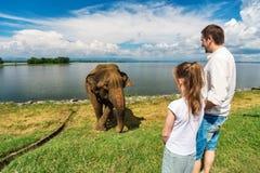在Udawalawe国家公园的家庭 免版税库存照片