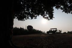 在Udawalawe国立公园里面的树和徒步旅行队吉普,斯里兰卡 库存照片