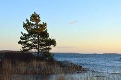 在Uunisaari海岛上的晚上 免版税库存照片