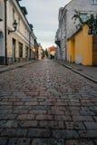 在Uus街道,塔林,爱沙尼亚上的历史房子 免版税库存图片