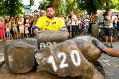 在Uzhgorod供给比赛`喀尔巴阡山脉的熊2016年`动力 免版税库存照片