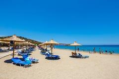 在Vai的著名海滩有东部克利特的,希腊一个美丽的棕榈森林的 免版税库存照片