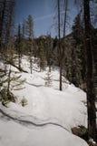 在Vail,科罗拉多附近的一个积雪的风景 免版税库存图片