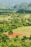 在Vinales谷的农业在古巴 库存照片
