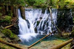 在Vintgar峡谷的瀑布 库存照片