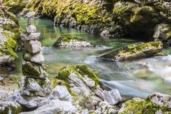 在Vintgar的禅宗石头狼吞虎咽,斯洛文尼亚,美好的环境地方 免版税图库摄影