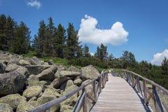 在Vitosha山的美好的风景,在索非亚保加利亚附近 免版税图库摄影