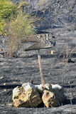 在volimes 2013年7月03日,希腊的扎金索斯州海岛低标度火 库存图片