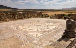 在Volubilis摩洛哥的废墟 图库摄影