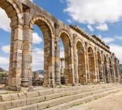 在Volubilis摩洛哥的废墟 免版税库存图片