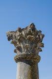 在Volubilis罗马废墟古老历史站点的精心制作的柱子在梅克内斯,摩洛哥,非洲附近的 免版税库存照片