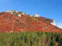 在Vratna谷的岩石在秋天期间 图库摄影