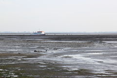 在Waddensea,荷兰的小船游览 免版税库存照片