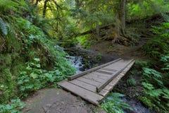 在Wahkeena小河供徒步旅行的小道的木桥梁 免版税库存照片