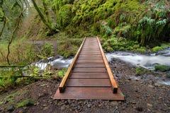 在Wahkeena小河的木桥梁 库存照片
