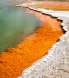 在wai-o-tapu地热区域的香宾水池在新西兰 免版税图库摄影