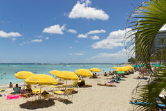 在waikiki夏威夷的沙滩伞 免版税库存图片