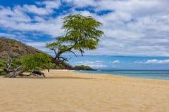 在Wailea毛伊夏威夷美国附近的Makena大海滩 库存图片