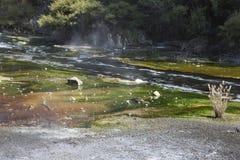 在Waimangu小河的明亮的颜色 库存照片