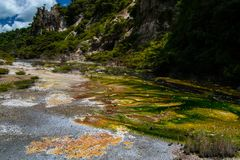 在Waimangu火山的谷的热量水池在罗托路亚,北岛,新西兰 免版税库存照片