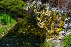在Waimangu火山的谷的热量水池在罗托路亚,北岛,新西兰 免版税库存图片