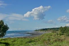 在Waiwhakaiho的海滩视图 免版税库存照片