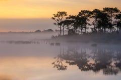 在Wangkwang水库Phu Kradueng国家公园的日出前,黎府,泰国 免版税库存图片
