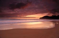 在Warriewood海滩的黎明颜色 库存照片