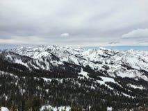 在Wasatch附近的冬天庄严视图朝向落矶山,布赖顿滑雪胜地,接近盐湖和Heber谷,公园市, U 免版税库存照片