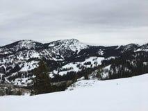 在Wasatch附近的冬天庄严视图朝向落矶山,布赖顿滑雪胜地,接近盐湖和Heber谷,公园市, U 库存图片