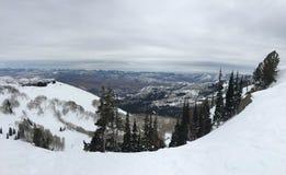 在Wasatch附近的冬天庄严视图朝向落矶山,布赖顿滑雪胜地,接近盐湖和Heber谷,公园市, U 库存照片