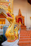 在Wat Chedi Luang,清迈的纳卡人楼梯 库存图片