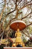 在Wat Phra的菩萨坐的雕象Chae Haeng,南, Thailan 库存图片