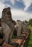 在Wat Thammikkaraj的狮子雕象在阿尤特拉利夫雷斯,泰国 图库摄影