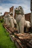 在Wat Thammikkaraj的狮子雕象在阿尤特拉利夫雷斯,泰国 库存照片