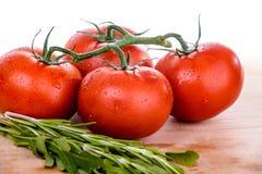 在waterdrops的新鲜的蕃茄 图库摄影