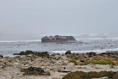 在Westcoast南非的船击毁 库存图片