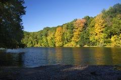 在Westfield河,马萨诸塞的秋叶 免版税库存图片