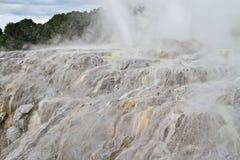 在Whakarewarewa的Pohutu喷泉 图库摄影