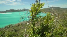 在Whitsundays、绿松石海洋和沙洲,澳大利亚的Whitehaven海滩 股票录像