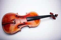 在wihte背景的小提琴 免版税库存照片