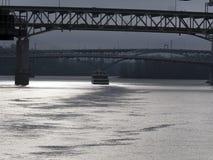 在Willamette河的冬天 库存图片
