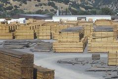 在Willits,加利福尼亚切开木材被堆积在木材磨房 免版税库存照片