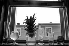 在Windowsil的小玻璃 库存图片