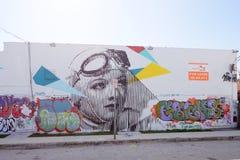 在Wynwood的艺术壁画 库存图片
